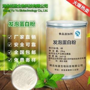 武汉现货供应食品级营养强化剂发泡蛋白粉价格