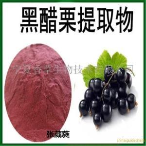 黑醋栗提取物10:1 黑醋栗速溶粉 规格可定制 产品图片